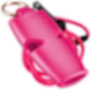 Products_Category_PinkCollection_Micro_L