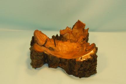 507 Cherry Stump Root Bowl
