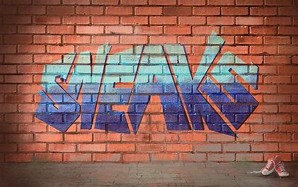 sneaks logo.jpg