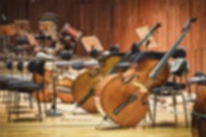 String Sec.jpg