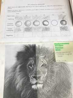Awesome Art in Y6