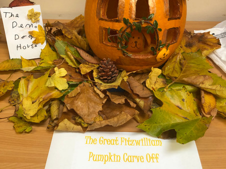 The Great Fitzwilliam Pumpkin Carve Off - KS2 entries