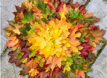 Autumnal leaf sculptures in the style of Andy Goldsworthy
