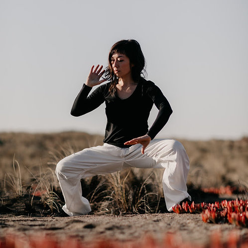 Intermediate Tai Chi : Fire & Water