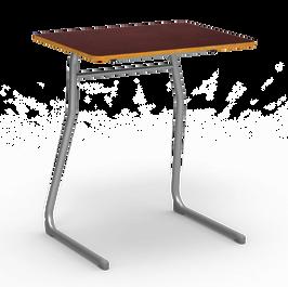 Walnut Surface Silver Frame