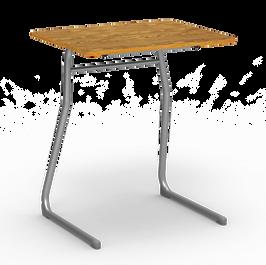 Medium Oak Surface Silver Frame