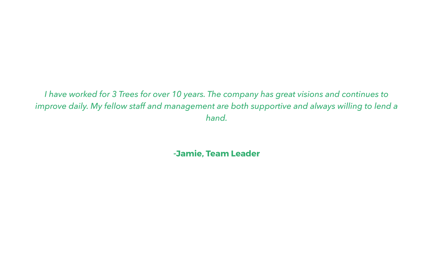 QUOTE-JAMIE-TEAMLEADER