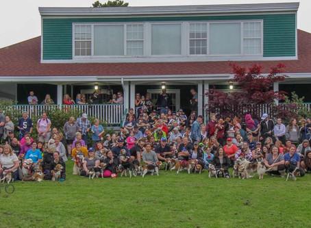 Beagle Meetups Canada