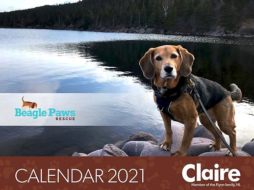 Beagle Paws Calendar 2021