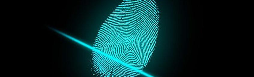 fingerprinting, Naples