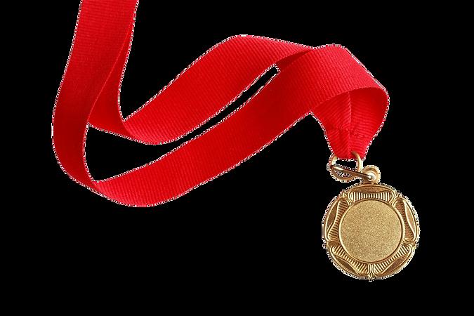Heiho Dojo, Martial Arts, Brazilian Jiu-Jitsu, BJJ, Mauy Thai, Kickboxing,  Kids Classes, Family, Community, Fun, Sports, Karate, Kenpo Karate, Private Lessons, One on one, Group Classes, MMA, No Gi, Grappling, Sparring, Grande Prairie, Alberta Homeschool, Tournament, tots, young masters, ibjjf
