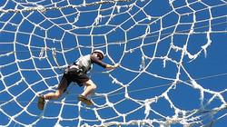 PO_araignée