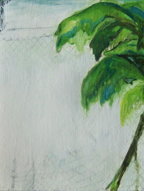 a fence study (melilla)