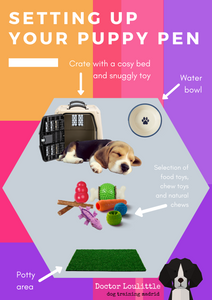 Puppy pen layout with crate, potty area, water bowl, chew toys, interactive toys, natural chews