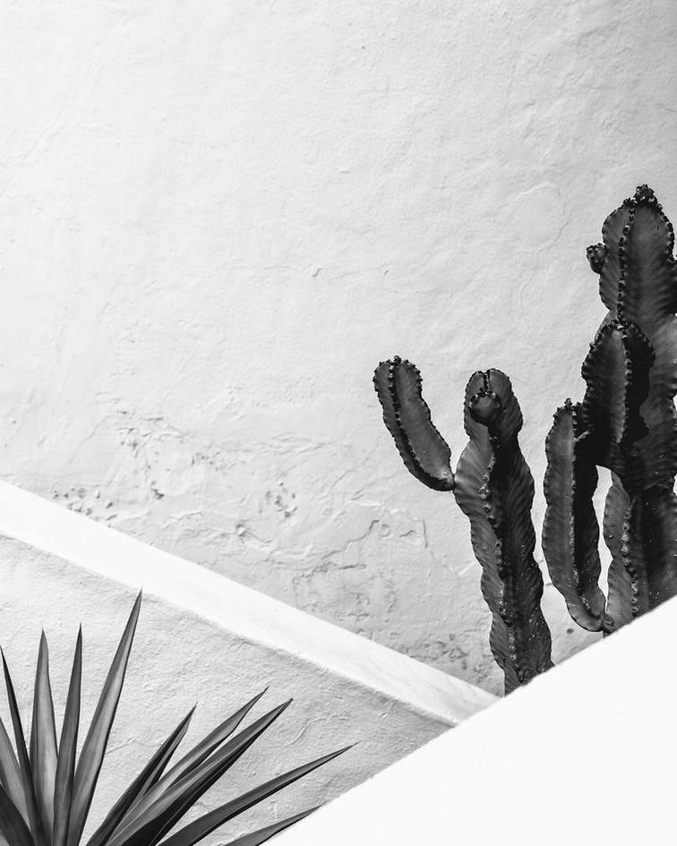 Fuertaventura015.jpg