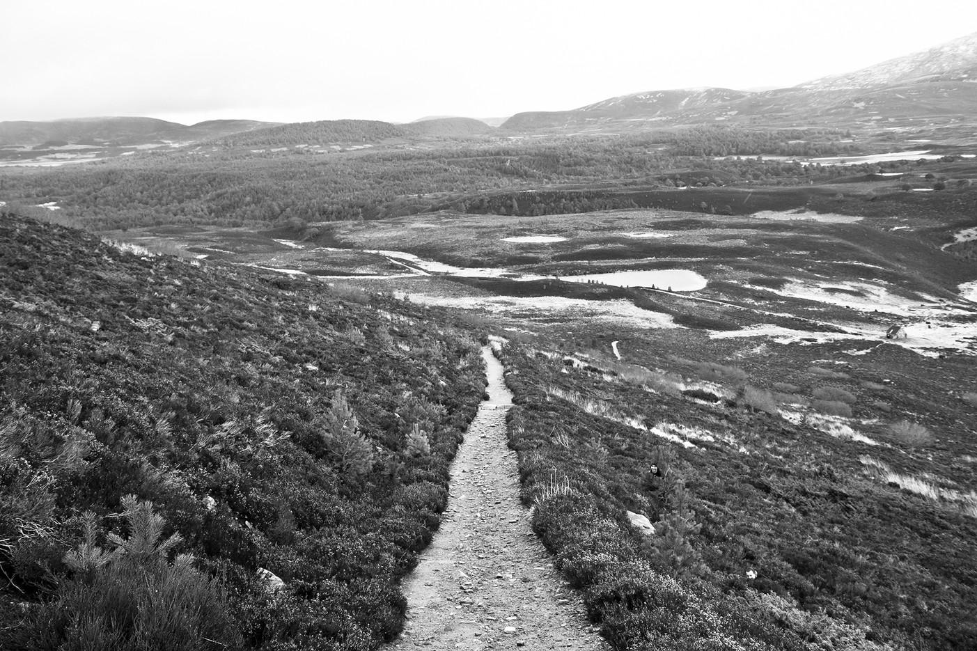 Scotland014.jpg