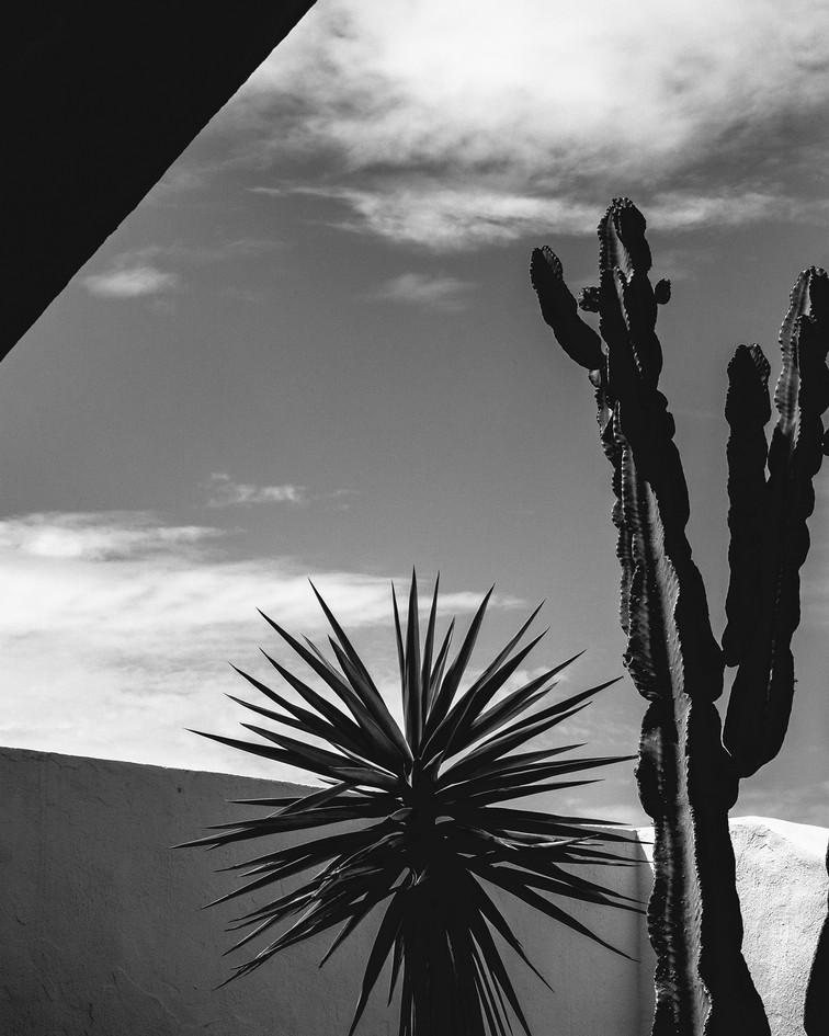 Fuertaventura016.jpg