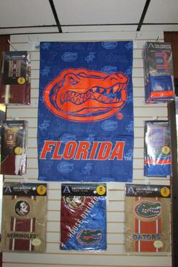 Gators, Seminoles or House Divided?