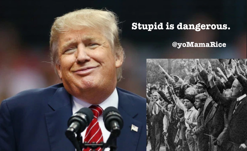 Stupid_is_dangerous.png