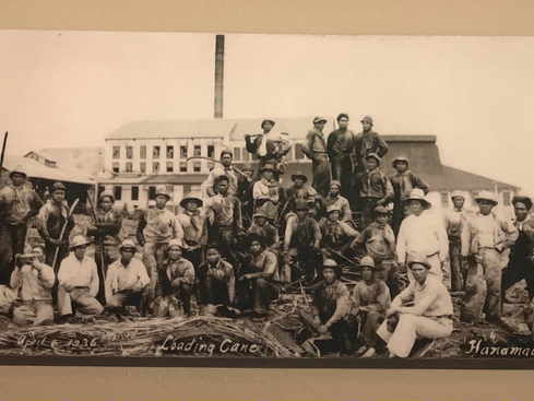 Sugar Strike in 1924 HAWAII