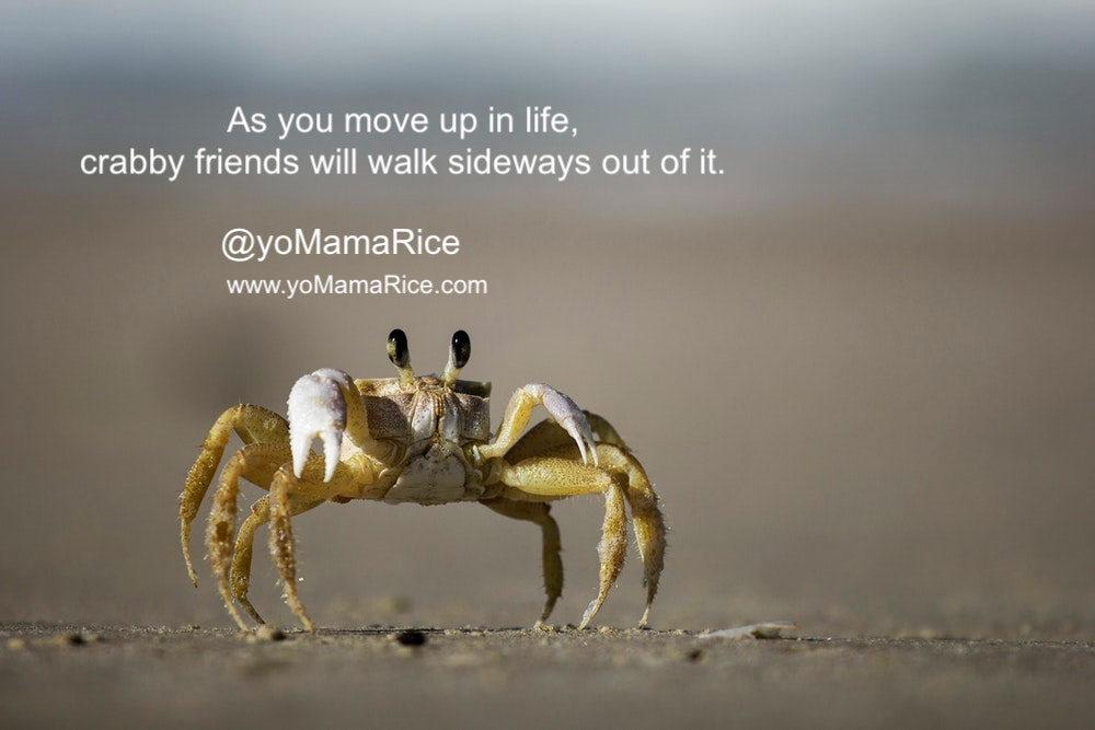crabbyfriends.jpg