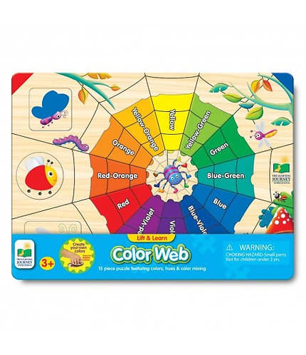Color Web Puzzle
