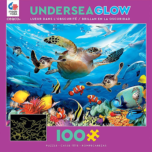Journey of the Sea Turtles