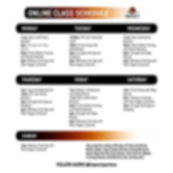 online_class_schedule-01.png