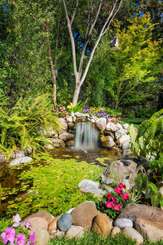Traditional - Lilac - Backyard - 5 - Aft