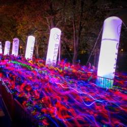 Electric Run Antwerpen 2014