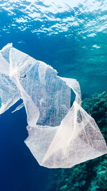 Coming Soon: Plastic in the Ocean