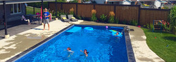 Pool + Privacy Screen