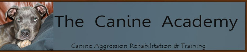 The Canine Academy and Sammie's Pit Stop