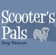 Scooter's Pals