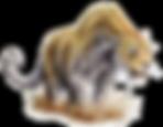 25265-9-leopard-transparent-background.p