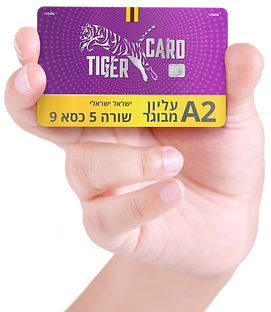 HH TIGERCARD YELLOW (Large) (Small).png
