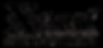 Xpert Logo Black.png