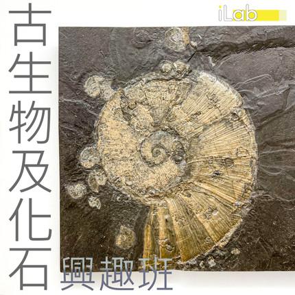 古生物化石poster.jpg