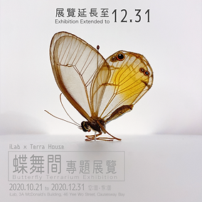 butterfly poster _updated.png