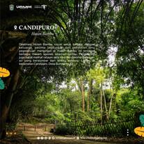 LIBURAN SERU DI CANDIPURO