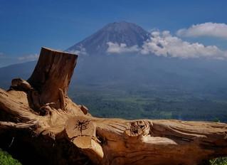 Paralayang di Gunung Wayang Candipuro