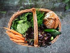 Fresh Food Program