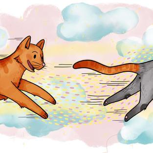 FIVE TALES OF SHADY CAT  By Joshua McDermott