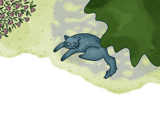 "Interior illustration from book ""Five tales of Shady Cat"" by Joshua Mc Dermott"