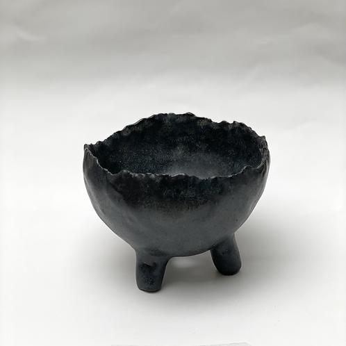 Leggy Shell, 9.5 x 5 cm