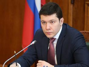 Мораторий на вырубку деревьев в Калининграде должен быть сохранен