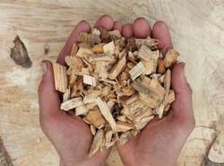 Woodchip biomass energy