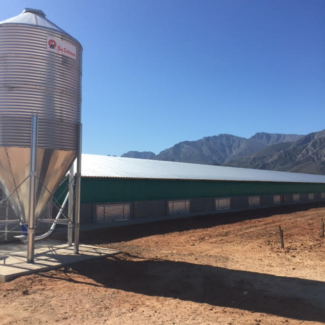 Broiler shed installation W Cape