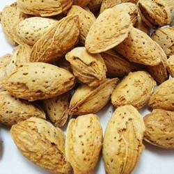 Fruit shell biomass energy