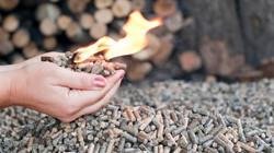 Pellet biomass energy
